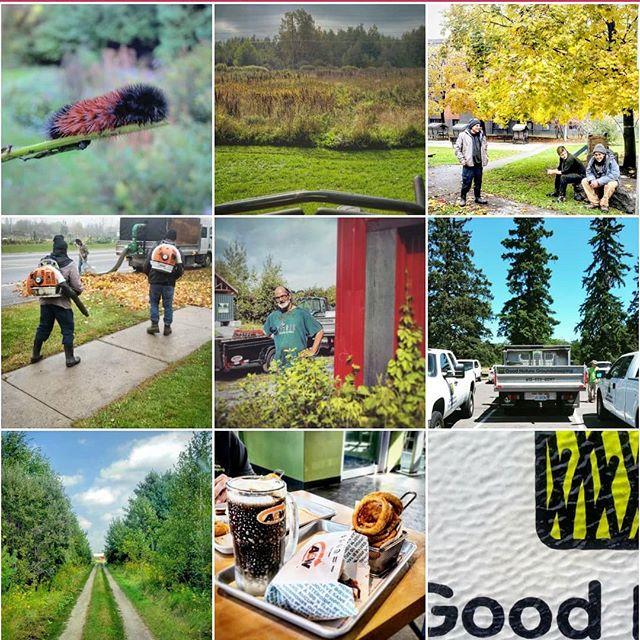 Top 9 of 2018.  #ottawa #ottcity #hintonburg #myottawa #ottawalife #landscaping #lawncare #yardwork #gng #grass #instagood #photooftheday #hardwork #dailygrind #summer #bestof #topnine #top9