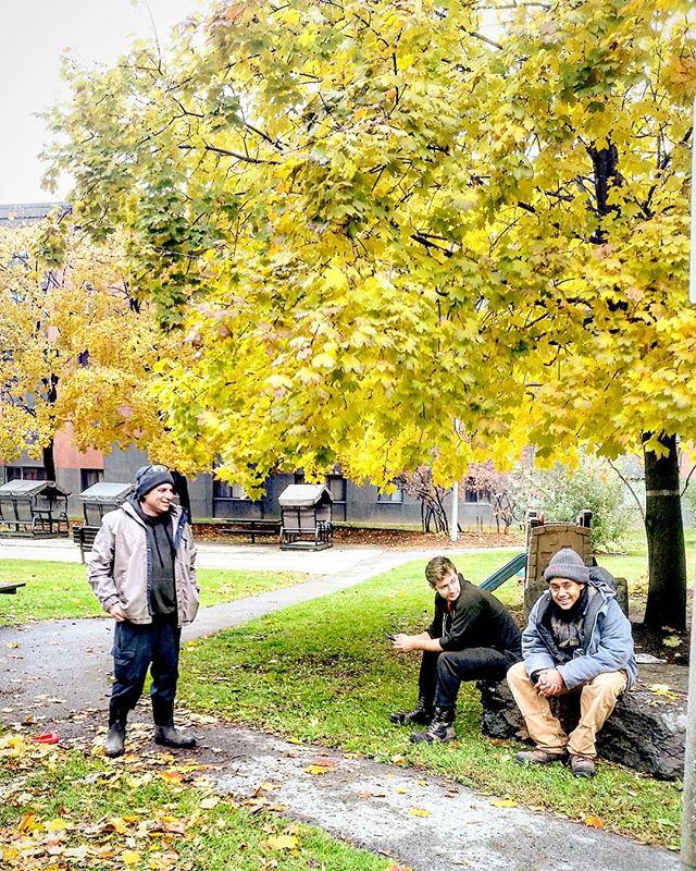 A Well deserved break. 🍁 #ottawa #ottcity #hintonburg #myottawa #ottawalife #yow #613 #landscaping #lawncare #yardwork #gng #grass #instagood #photooftheday #hardwork #dailygrind #fall #autumn #fallcolours #autumncolors #trees #tree