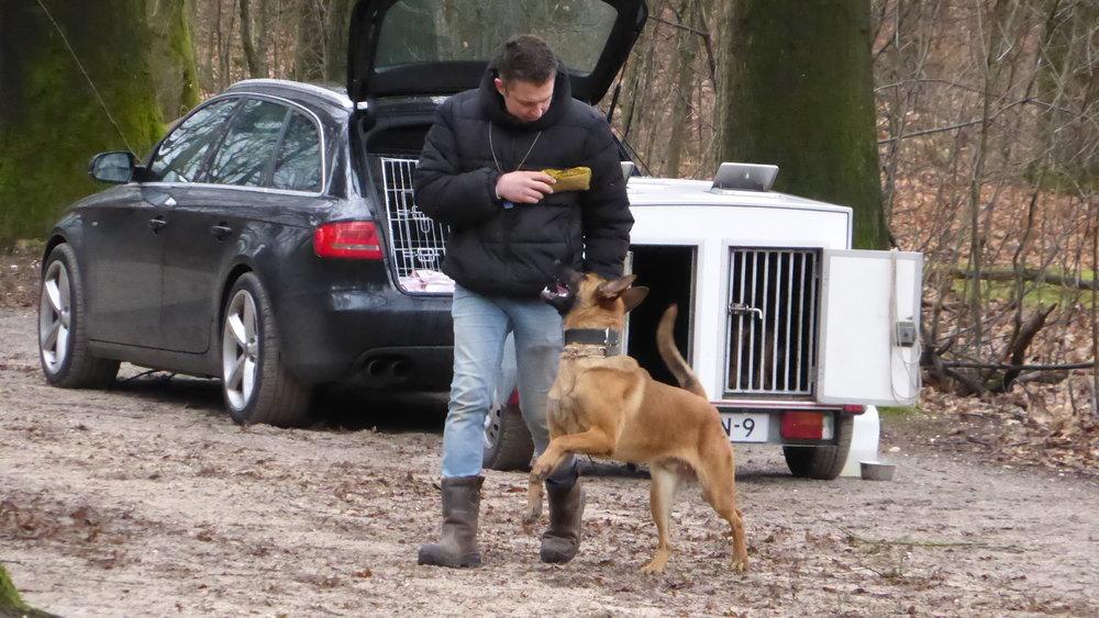 Onze leden - Voor onze leden is het africhten een hobby. Plezier in het werken met de honden en elkaar helpen heeft bij PHDC Rhenen e.o. een hoge prioriteit. Wij willen op een sportieve wijze aan een zo goed mogelijk resultaat werken.