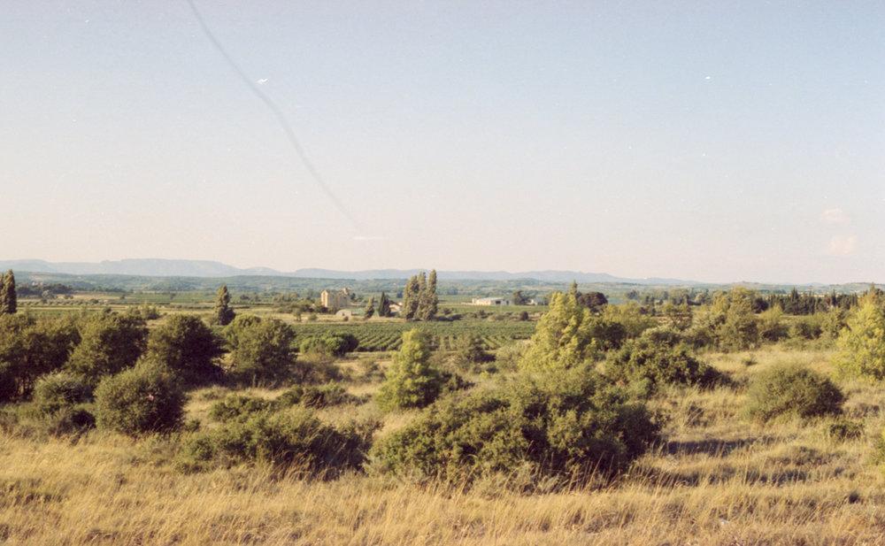 Portra012-2.jpg