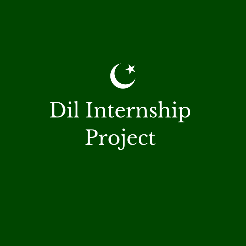 Dil Internship Project