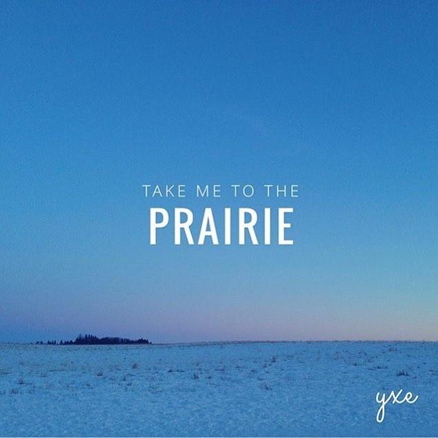 Beautiful spring morning #yxe How are you enjoying the last days of snow? #yxelocal #saskatooning #prairie #conservation #growwildyxe #eco #environmentalist #changethestory