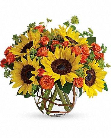 Sunny Sun Flowers - $50.00 - $75.00