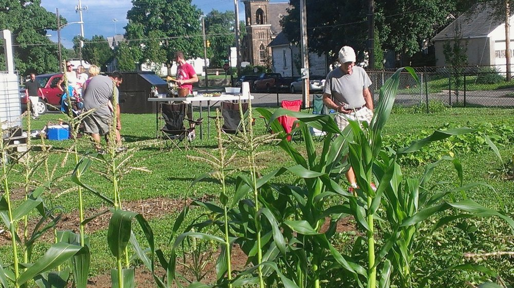 Garden - The Carthage Community Gardens (CCG) is a self-sustaining garden project.  Learn more