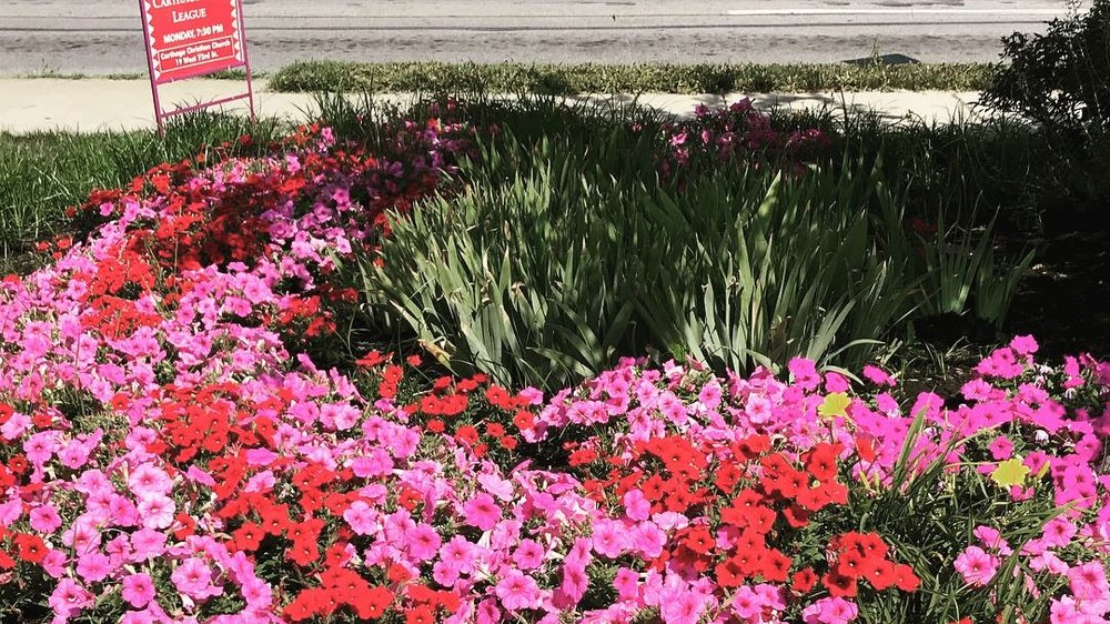 Beautification - Our dedicated team of volunteers help keep Carthage looking its best.Learn more
