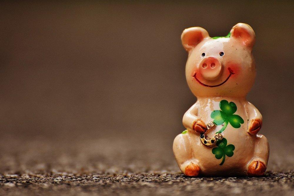 lucky-pig-1690951_1280.jpg