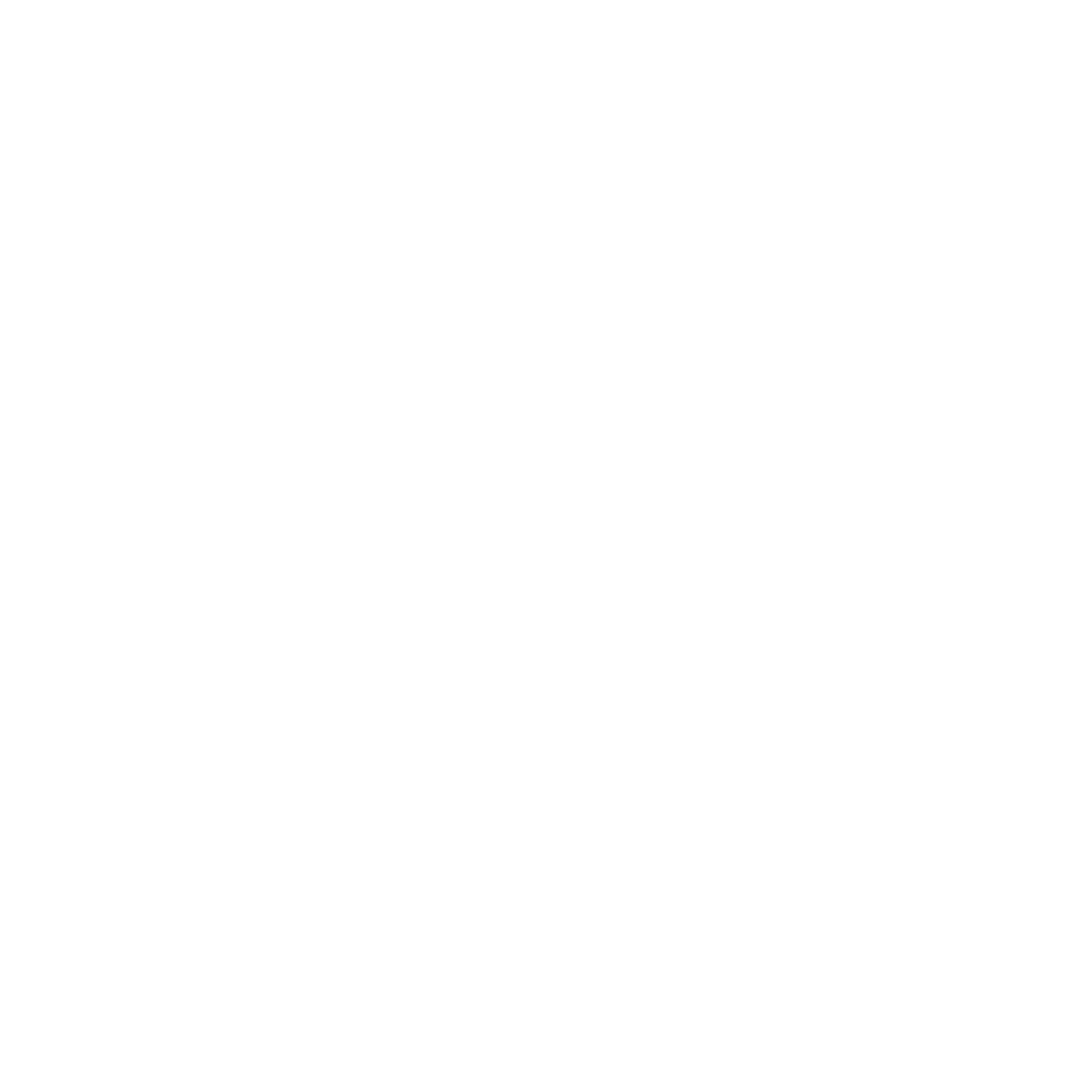 Broken Nose Theatre