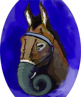 funny donkey dressed as an elephant