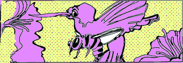 bird screwing a bee illustration