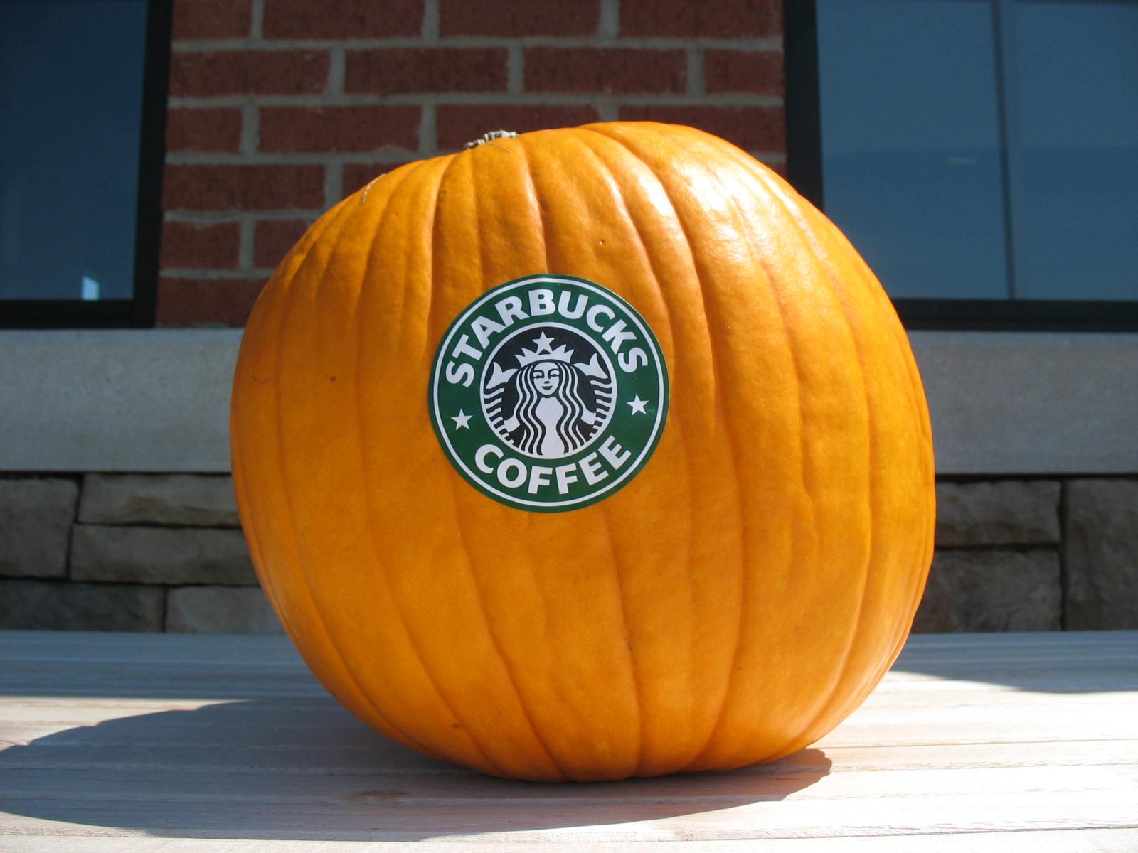 pumpkin spice best