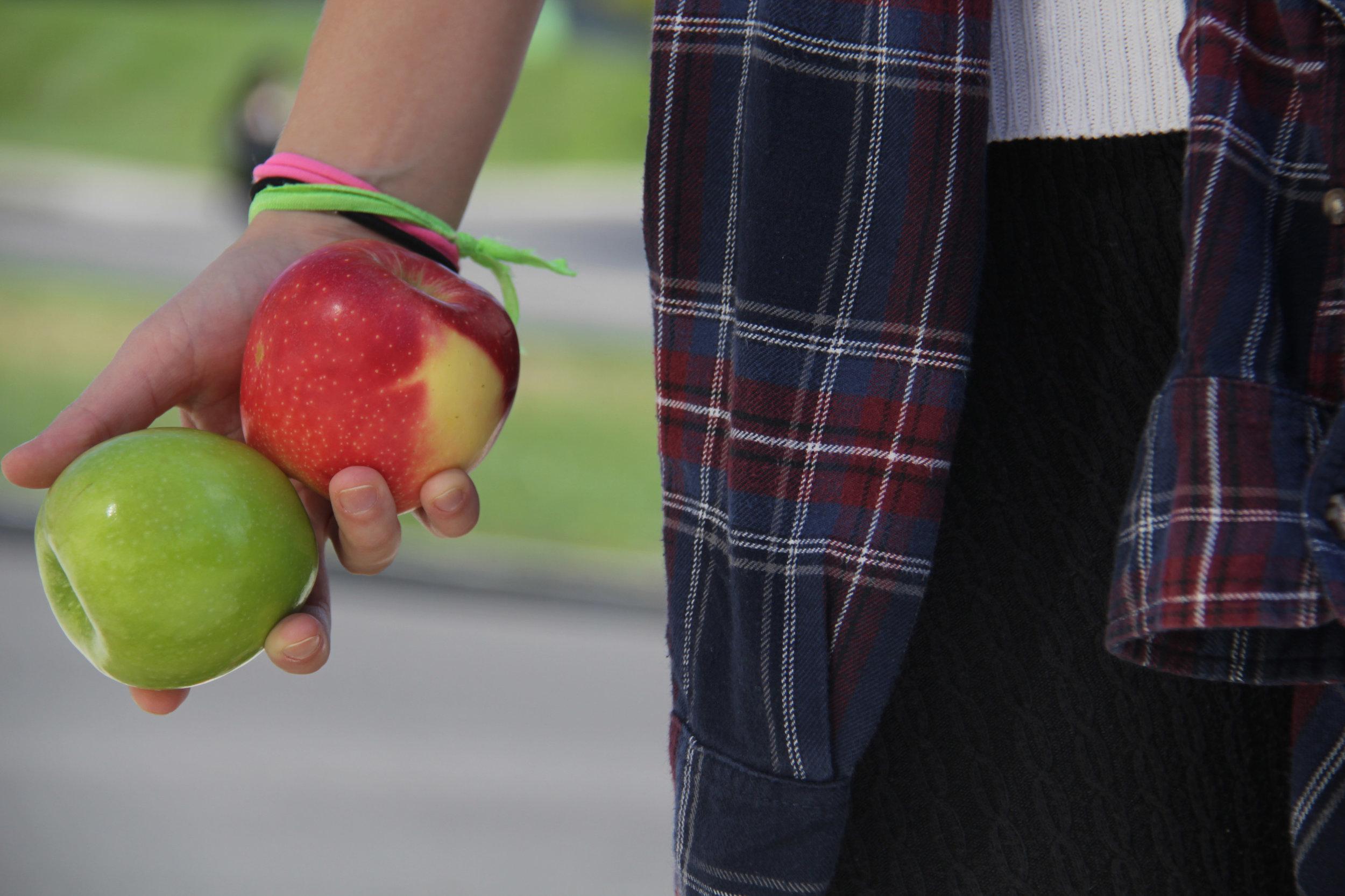 3.ApplePicking (1)