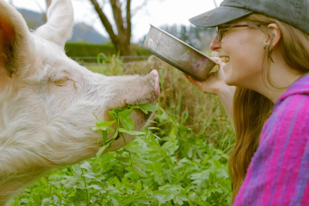 Wedding videographer, Rachel, of Soulhaven productions with Chatty the big pink pig.
