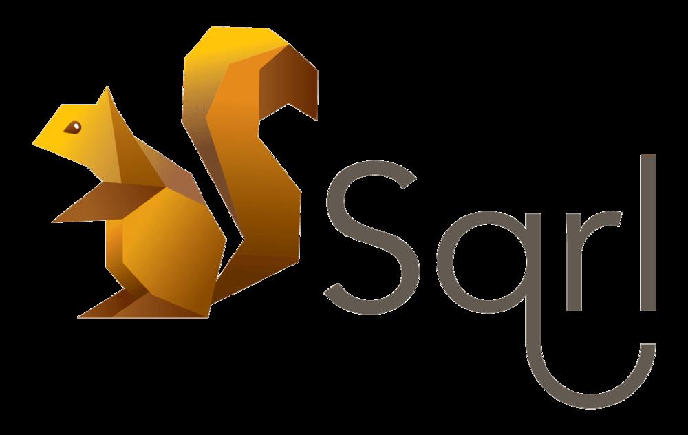 SQRL_Logo_1024px1.6800d3ed.png