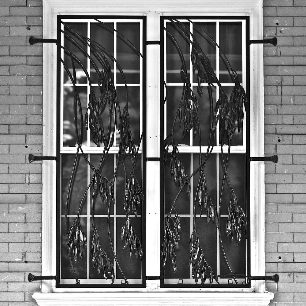EUCALYPTUS WINDOW GRILL - private residence, Walton Ave. Philadelphia, PA