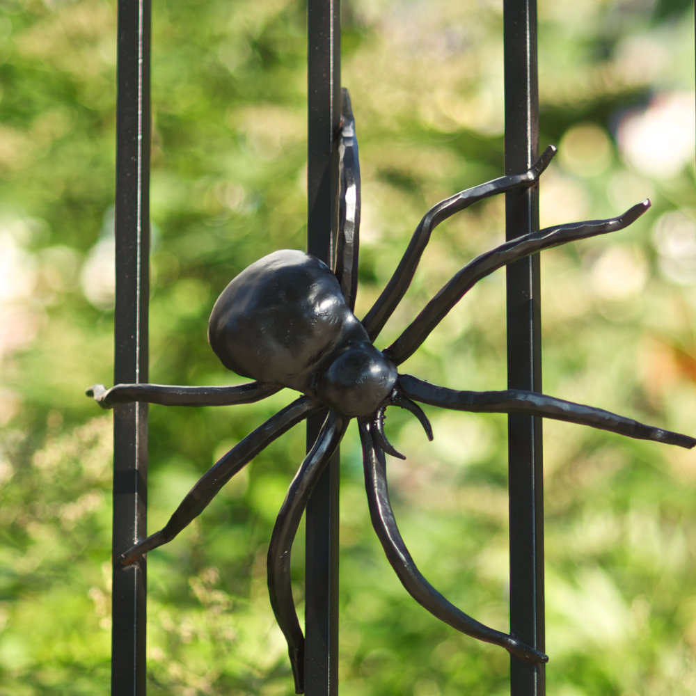 INSECT FENCE (SPIDER) - Satellite Café, 50th & Baltimore Ave. Philadelphia, PA