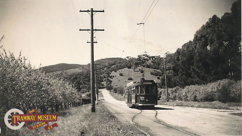 A photo from the Tramway Museum archives showing an unidentified F or F1 type 'Drop Centre' tram running through the peaceful country side on the Morialta line at Rostrevor with the tram heading towards the Adelaide city centre in 1954, two years before closure of this line in March 1956.