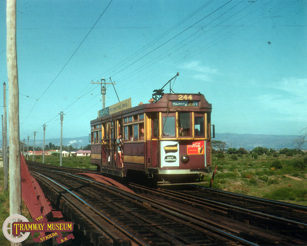 F type 'Drop Centre' tram 244 is seen here on the Reed Beds Viaduct on a service bound for Henley Beach in 1956. Photo: Noel Reed.