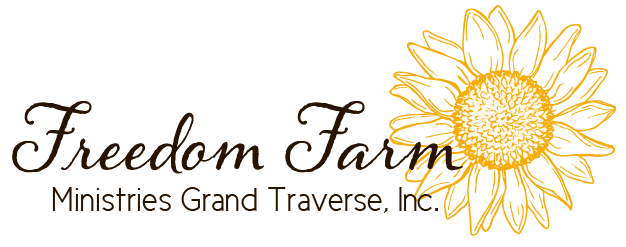 Freedom Farm Ministries | Equine Therapy | Traverse City, MI