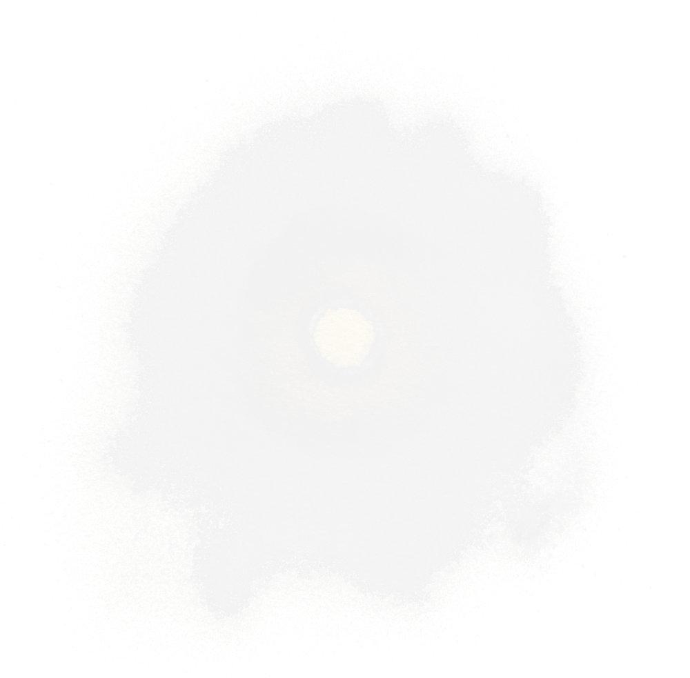 1_homepage_xl_crop.jpg