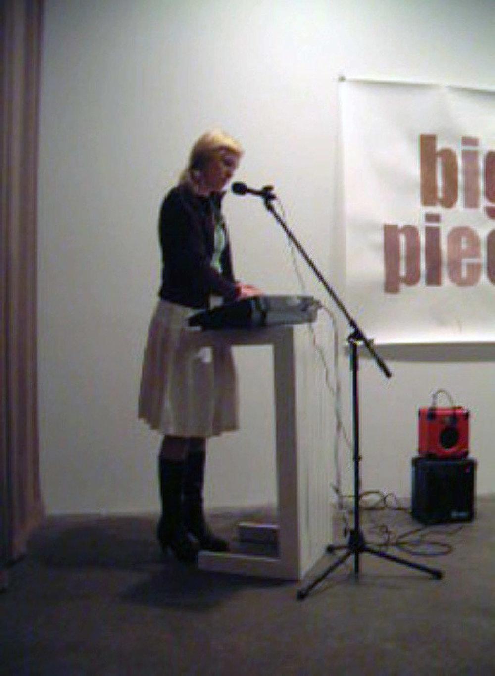 Casey Kaplan gallery  New York 2003