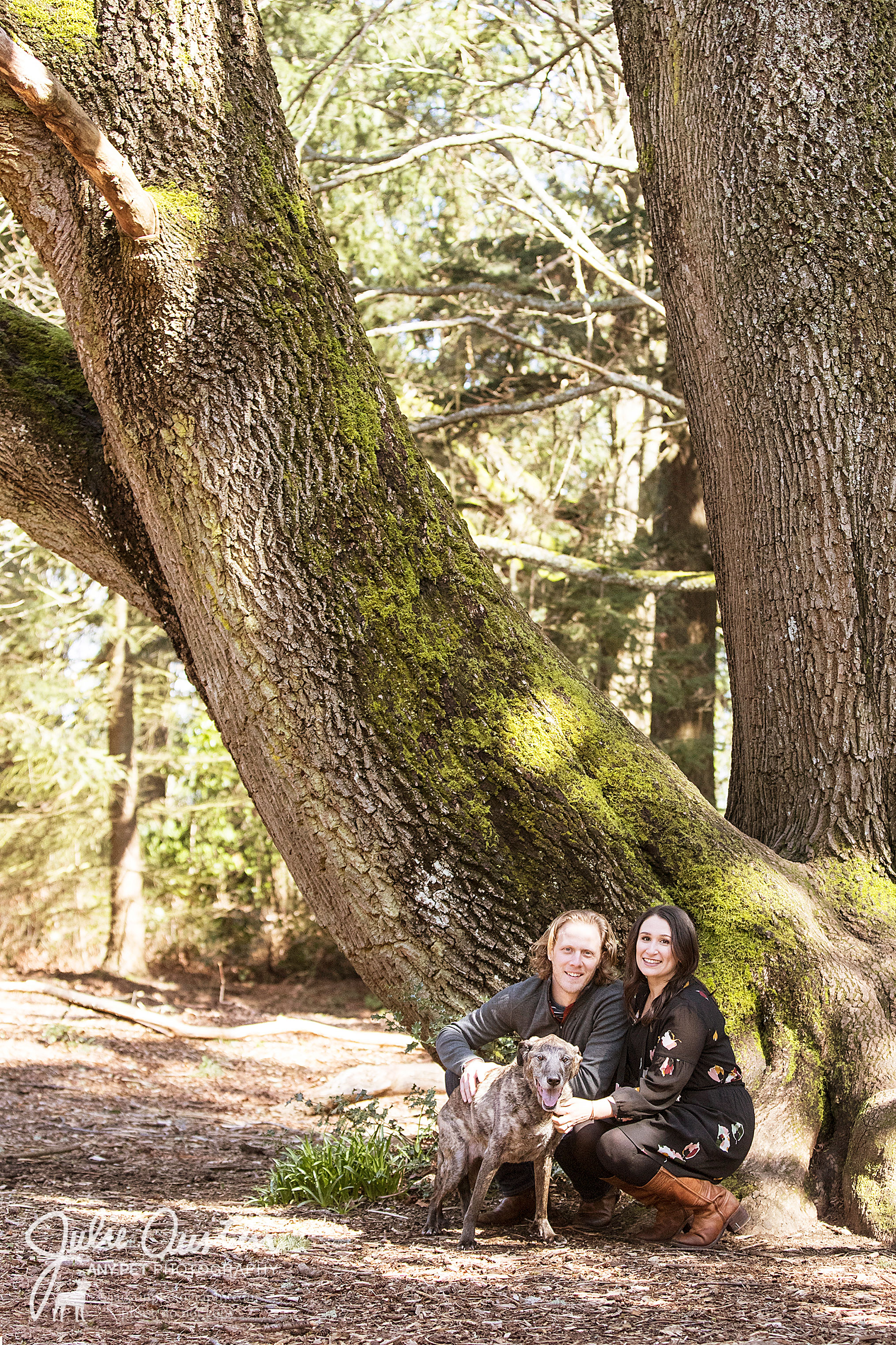 Ryan, Danielle, and Dakota looking great under one of the many amazing trees at Discovery Park.