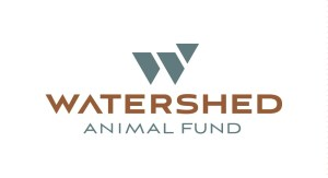 WaterShedLogo_color.jpg