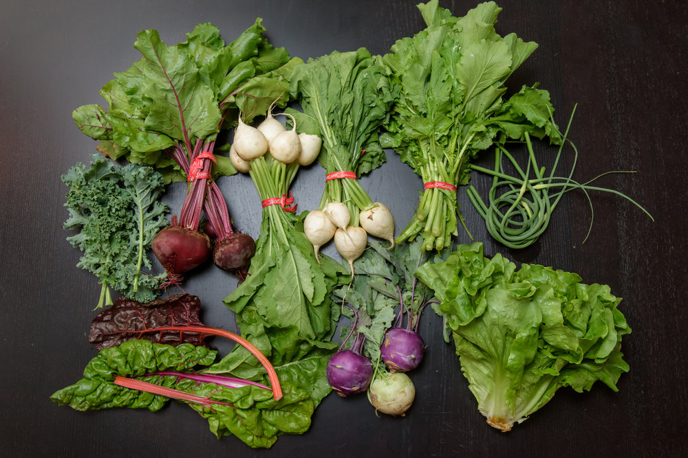 SubEdge CSA Week 2-1.jpg