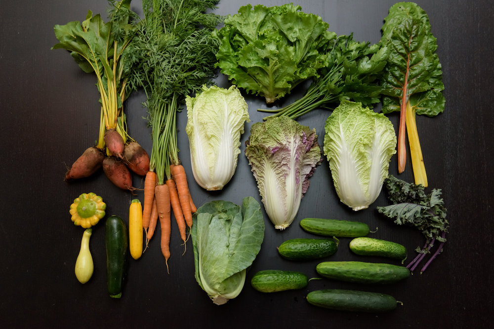 SubEdge CSA Week 5-1.jpg