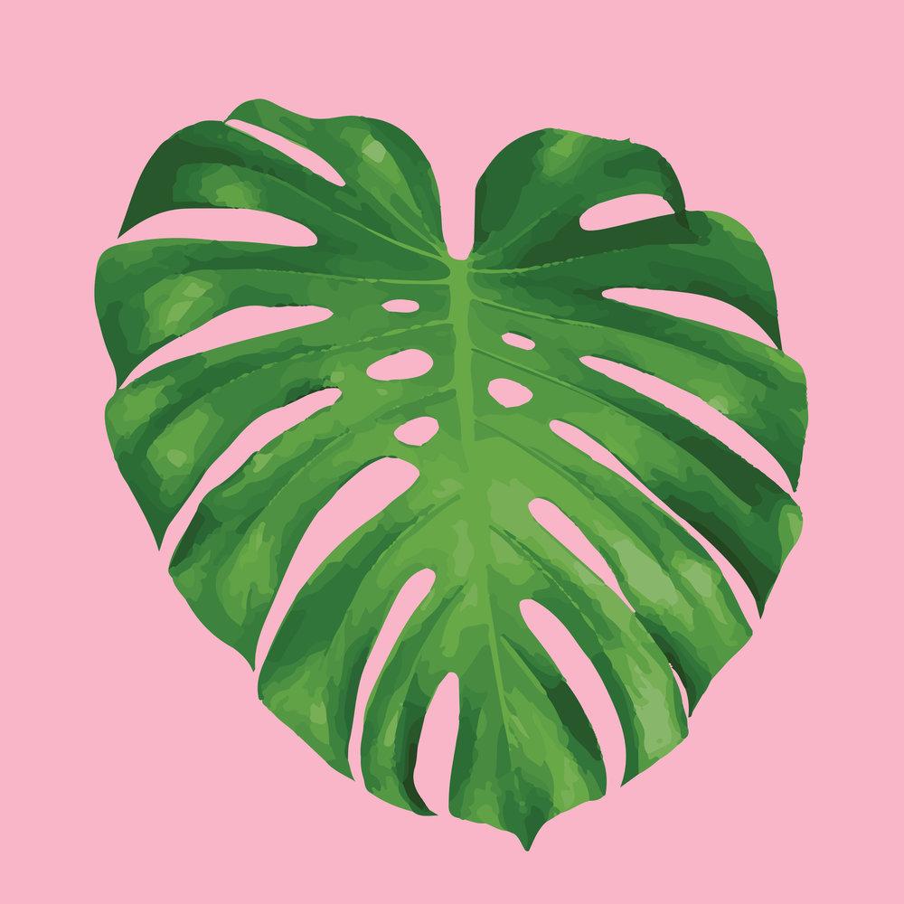 fruit-salad-leaf-on-pink.jpg