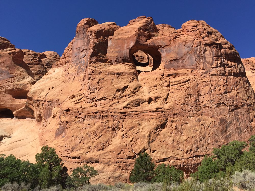 AUGUST, 2017 – CAPITOL REEF NATIONAL PARK: Wind is also a large factor in the erosion of rock within the park, not only in blowing away the top layer of material, but blasting the cliff faces with sand and debris.
