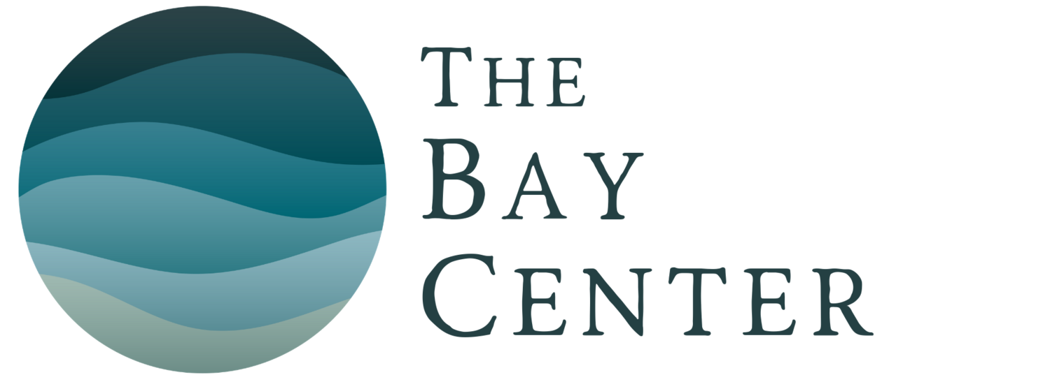 The Bay Center
