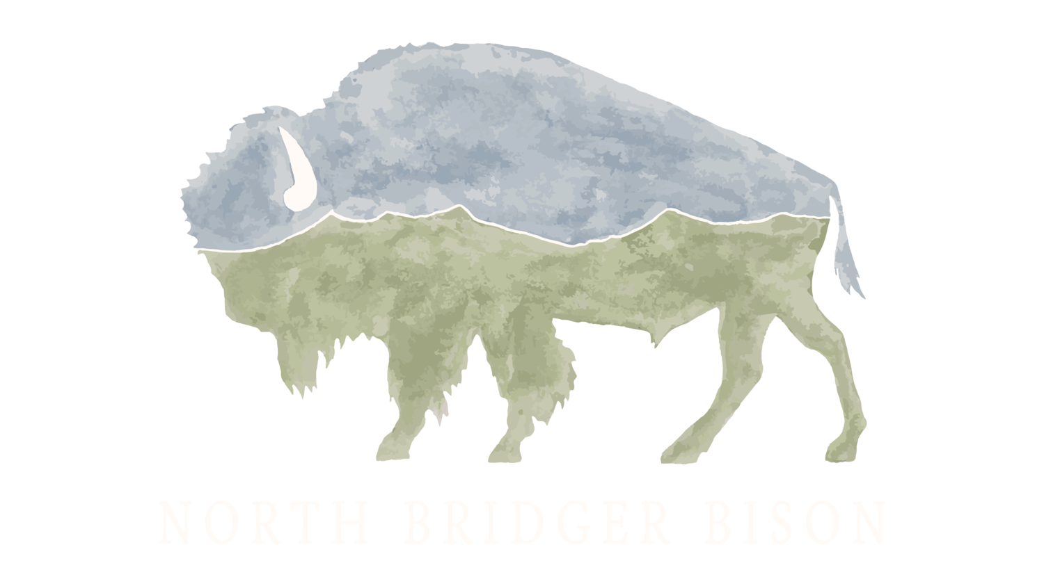North Bridger Bison