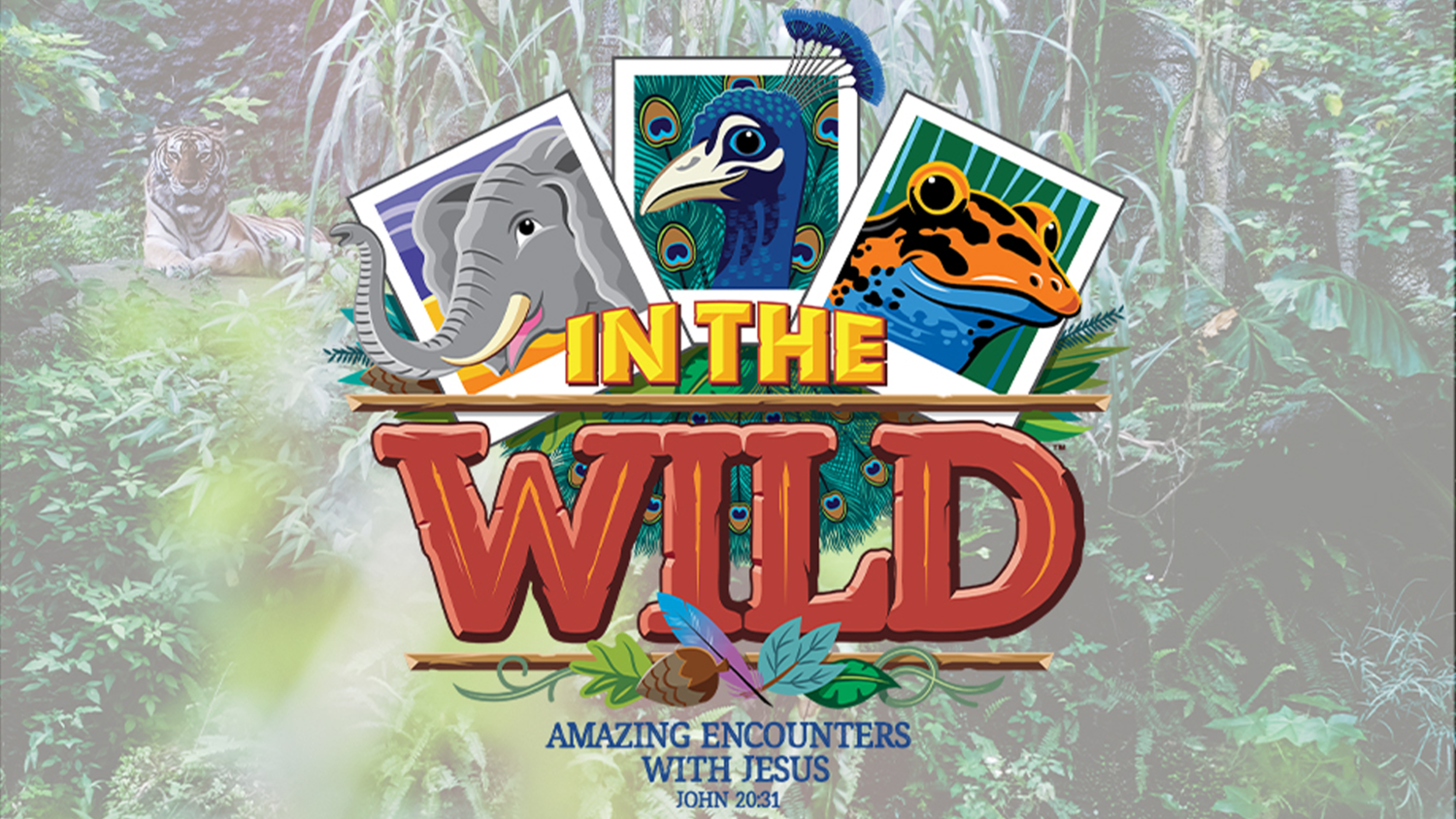 2019 VBS: In The Wild - Amazing Encounters with Jesus
