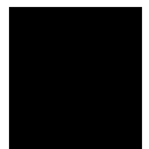YMCA Membership
