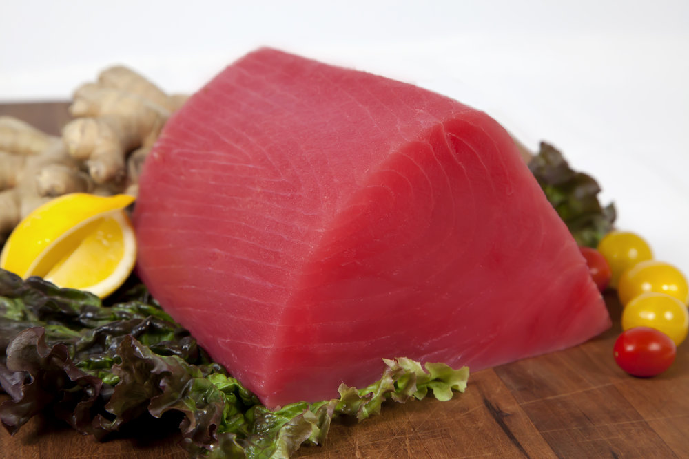 Tuna     Tuna   are known to be one of the fastest swimmers in the ocean, traveling at speeds of up to 50 mph. With an average lifespan of 8 years, Tuna can reach lengths of up to 6 feet and weights of up to 450 lbs. However, the average catch by commercial fishermen is 75 to 100 lbs.
