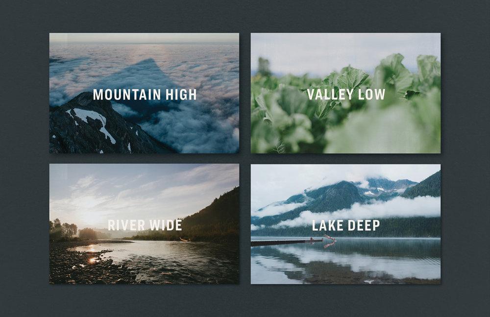 tourismchilliwack_websiteportfolio4.jpg