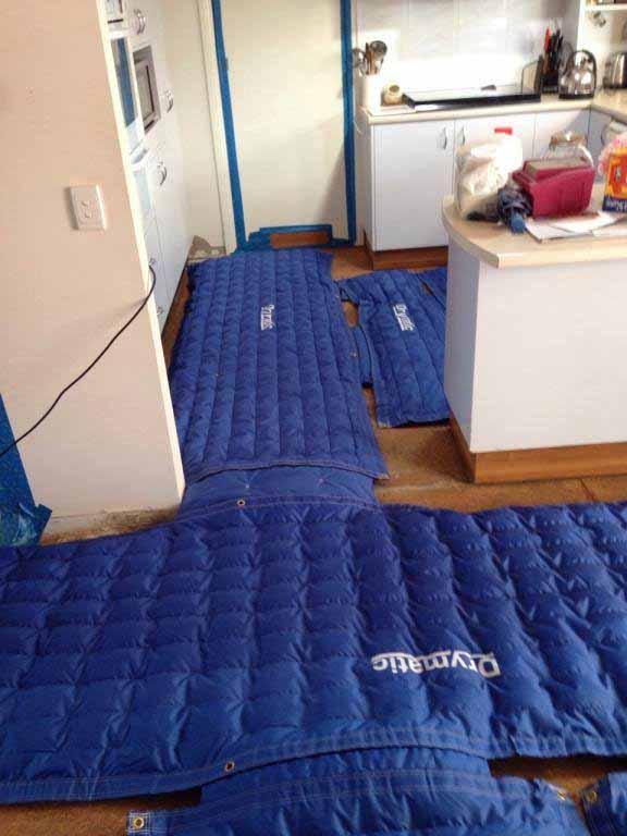 Drymatic Floor Mats6.jpg