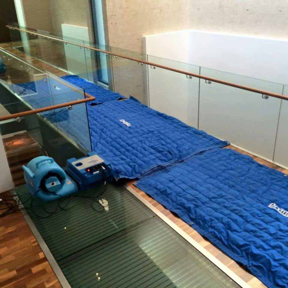Drymatic Floor Mats8.jpg