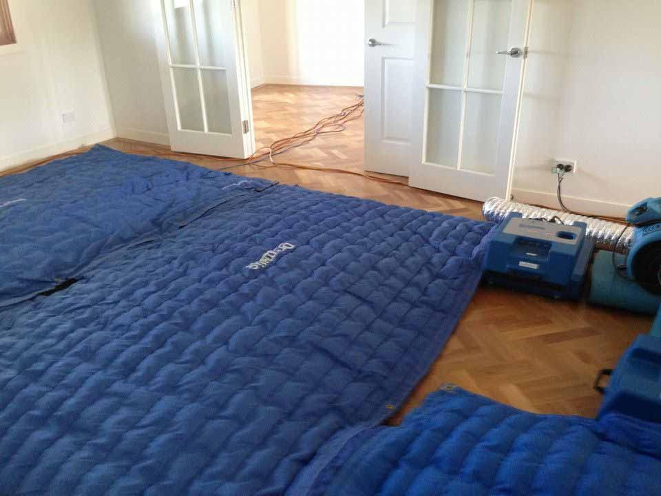 Drymatic Floor Mats20.jpg