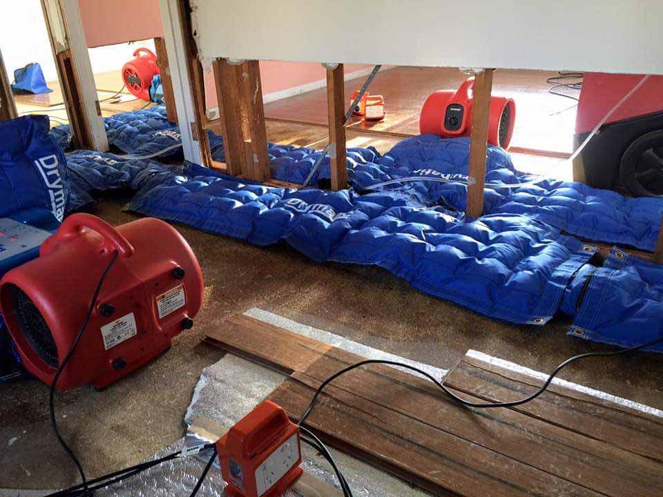 Drymatic Floor Mats34.jpg