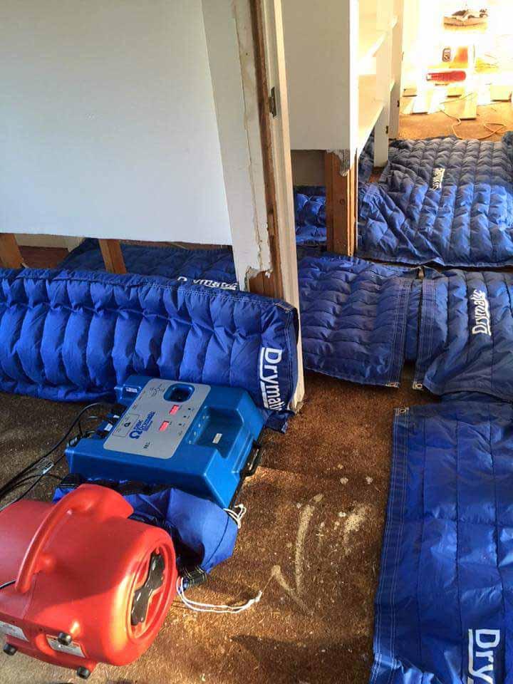 Drymatic Floor Mats36.jpg