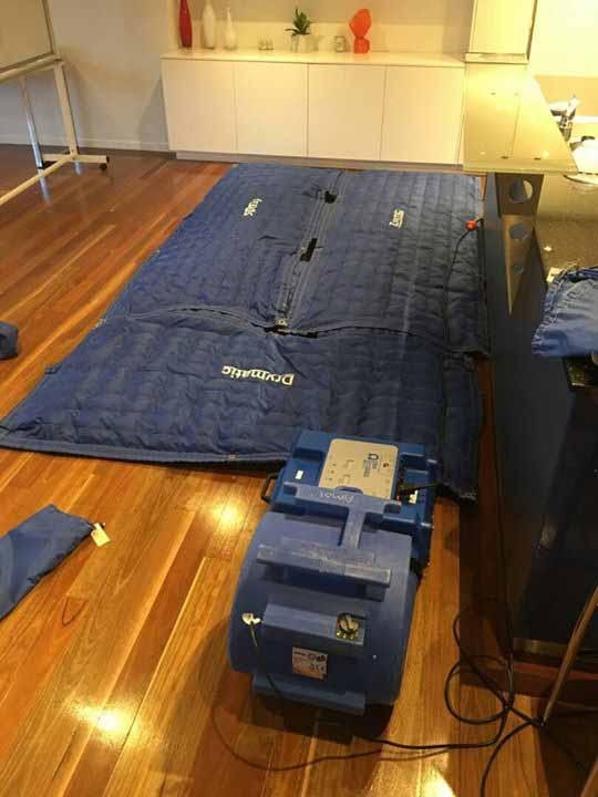 Drymatic Floor Mats46.jpg