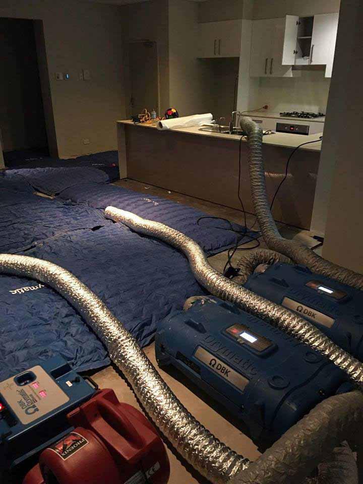 Drymatic Floor Mats86.jpg
