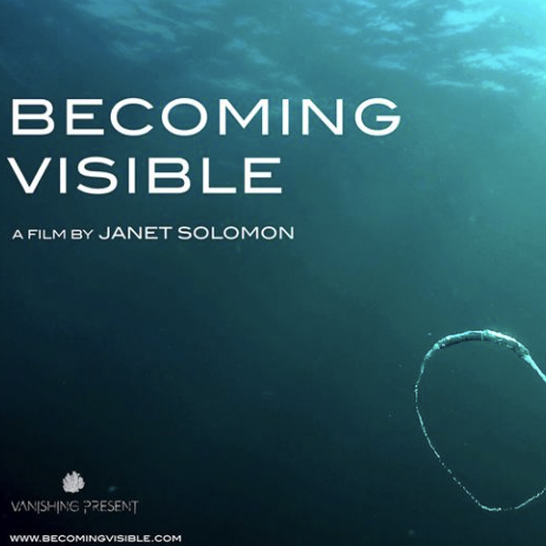 Becoming Visible by Janet Solomon   Becoming Visible is a short multiscreen environmental documentary that explores the pressing issue of offshore oil and gas development off the South African coastline and it's consequence to our marine life. It advances the theme of nature as political asset and questions the scripts of consumptive economics embedded in South Africa's governmental approaches to environmental policy. The film focuses on a seismic survey off the East Coast of RSA, which was extended into the whale migration season in July 2016. There were a number of unusual deepwater-mammal strandings during and after this survey.