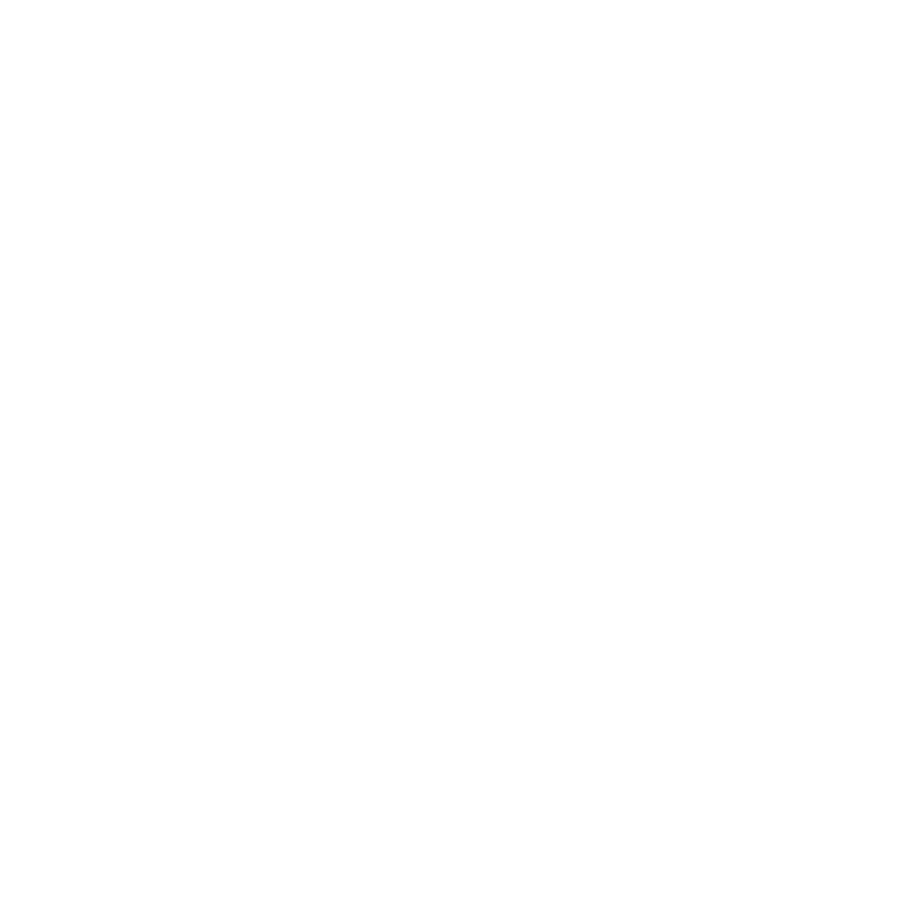 Data Practitioners