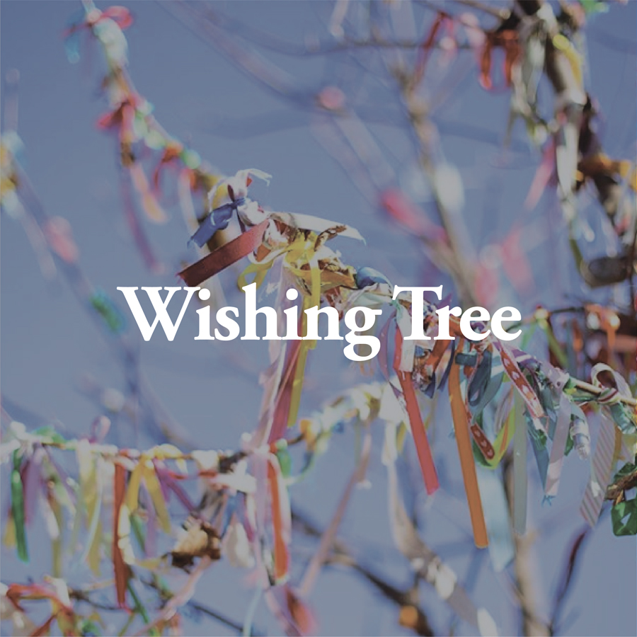 LineUp Images_Wishing Tree.jpg