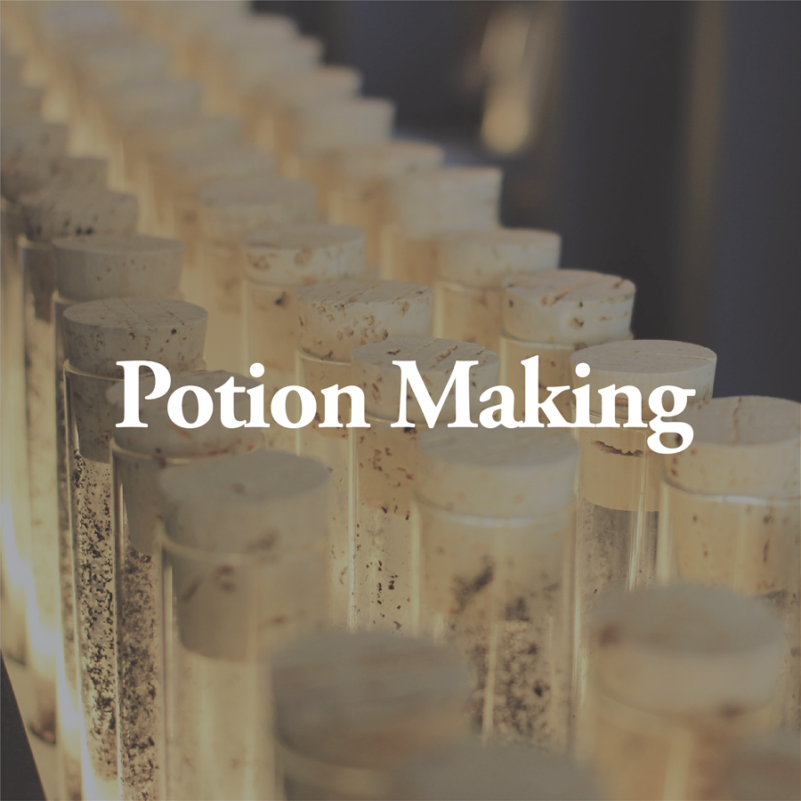 LineUp Images_Potion Making.jpg
