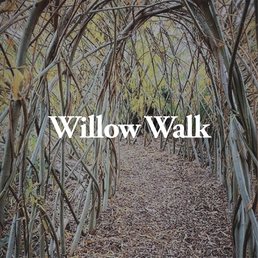 LineUp Images_Willow Walk.jpg