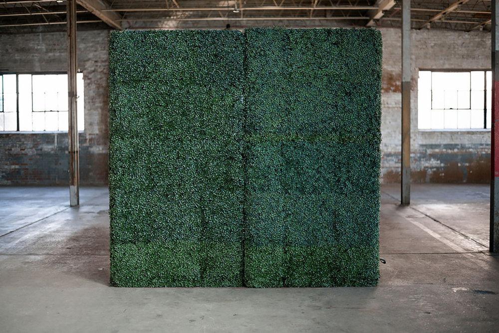 Boxwood Wall Backdrop