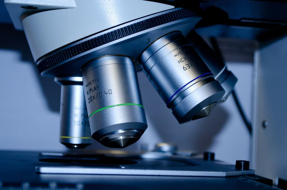 ARTICLES & PAPERS - Scientific Process Articles & Resources.